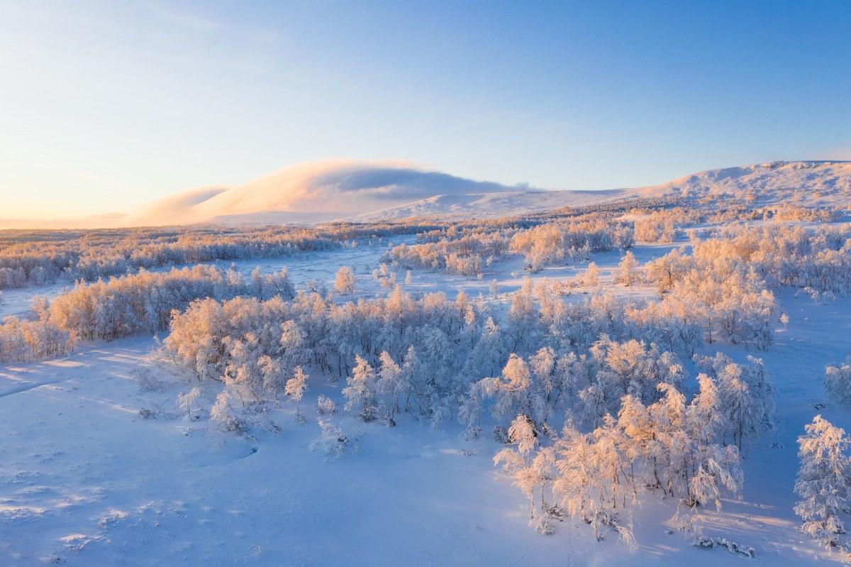 "Photo by<a href=""https://unsplash.com/@jaanus?utm_source=unsplash&utm_medium=referral&utm_content=creditCopyText"">Jaanus Jagomägi</a>on<a href=""https://unsplash.com/s/photos/snow-sweden?utm_source=unsplash&utm_medium=referral&utm_content=creditCopyText"">Unsplash</a>"